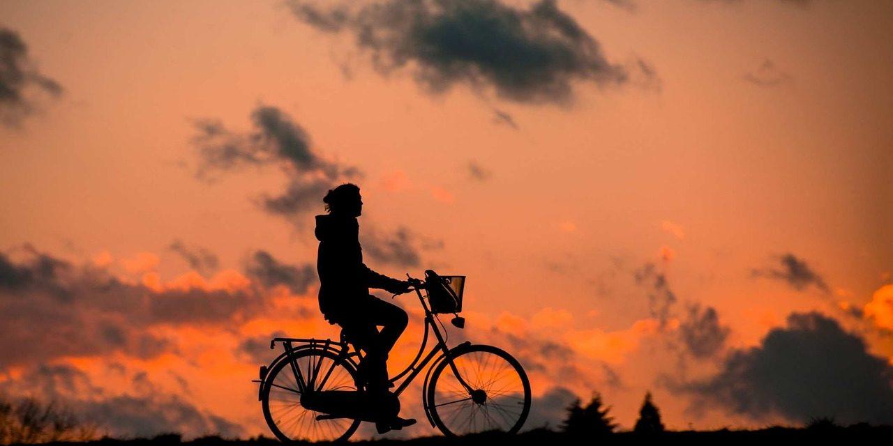 Babboe, la bici-van per le famiglie green