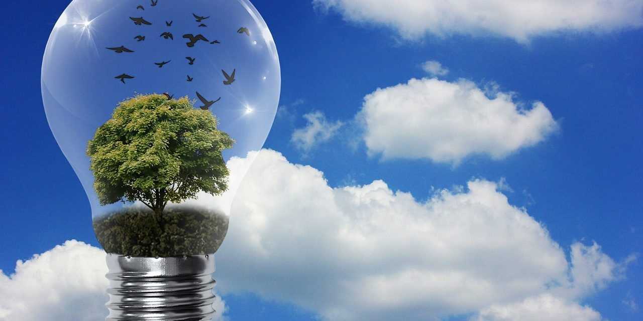Efficienza, le detrazioni per il risparmio energetico e gli altri incentivi